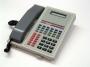 Telefono Datifon IP SAE1248 - Selta