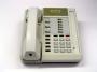Telefono NEXTEL 306