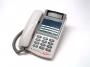 Telefono Standard 12LD Super DKX IP Nextel